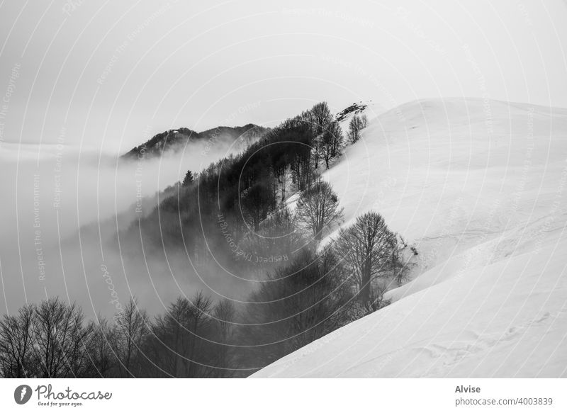 Bäume Wolken und Schnee eins Winter Natur Sonnenaufgang alpin Horizont Landschaft Cloud Berge u. Gebirge Himmel Felsen Hügel Tourismus Gipfel hoch