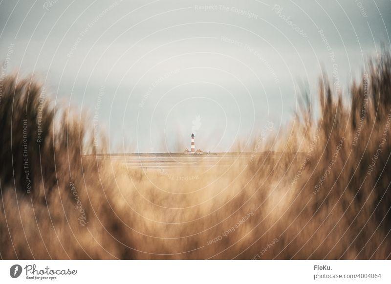Leuchtturm Westerhever gesehen von Sankt Peter-Ording aus Strand Sankt Peter Ording St. Peter-Ording Nordsee Küste Ferien & Urlaub & Reisen Sand Farbfoto