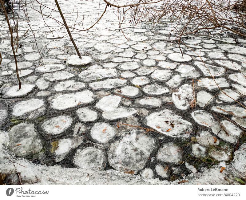viele runde Eisschollen auf einem See gefroren Meer Frost Scheibe Scholle eingefroren Eiskristalle Hintergrund eisig abstrakt Winter Schnee Wasser Jahreszeit