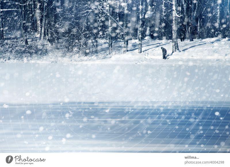 Ein Wintertag Schneegestöber Schneefall Schneeflocken Schneetreiben Winterwald Winterstimmung schneien winterlich kalt Landschaft Teich Stadtpark Mensch allein