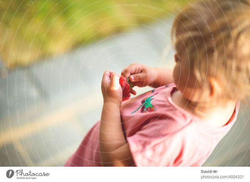 Kind im Sommer hält eine Erdbeere in den Händen Erdbeerzeit essen Gesunde Ernährung genießen Obst lecker frisch Frucht fruchtig Sommerzeit Mädchen