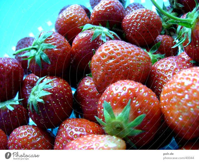 Erdbeeren für alle Natur rot Gesundheit Frucht Kindheit natürlich Lebensmittel Ernährung genießen Beeren Erdbeeren