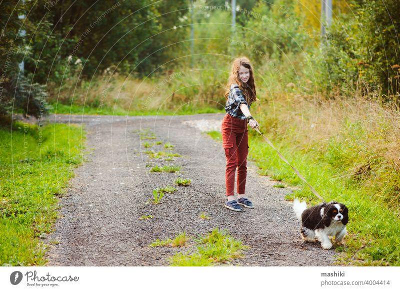glückliches Kind Mädchen zu Fuß mit ihrem Cavalier King Charles Spaniel Hund auf Sommer Landstraße. Training ihr Welpe und Spaß haben. Tier Haustier Natur