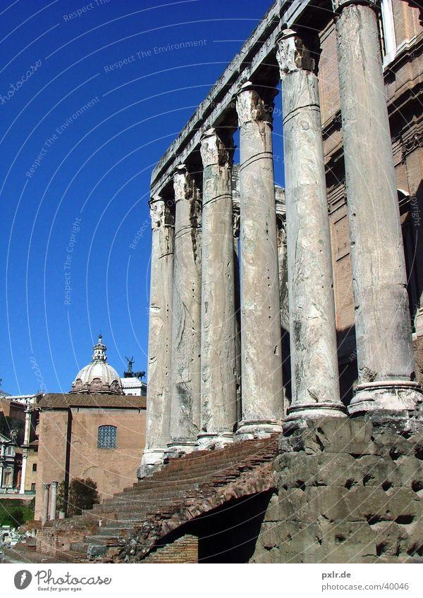 Foro Romano (Rom, Italien) Ferien & Urlaub & Reisen Tourismus Ausflug Städtereise Sommer Kultur Altstadt Treppe Fassade Sehenswürdigkeit Wahrzeichen Denkmal