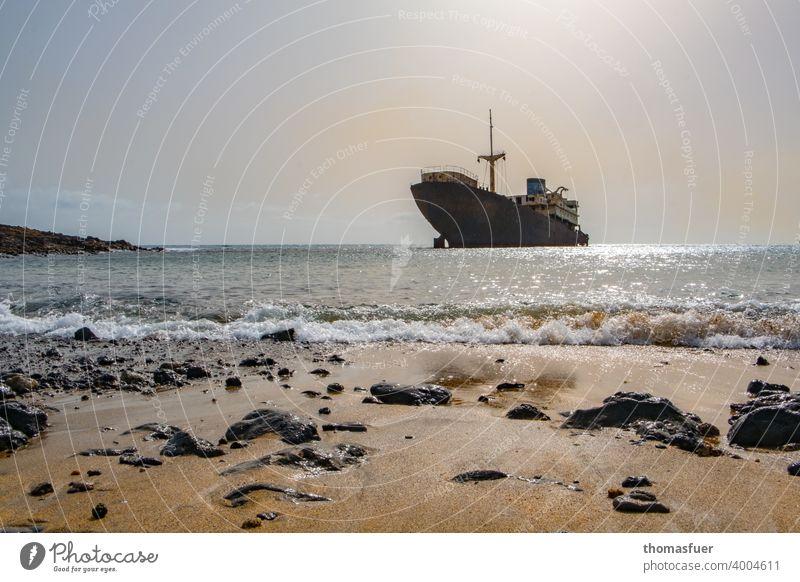 Wrack vor leerem Strand mit Himmel und Meer Sonnenlicht Kontrast Schatten Licht Tag Außenaufnahme Farbfoto Welthandel Rost Güterverkehr & Logistik Wachstum