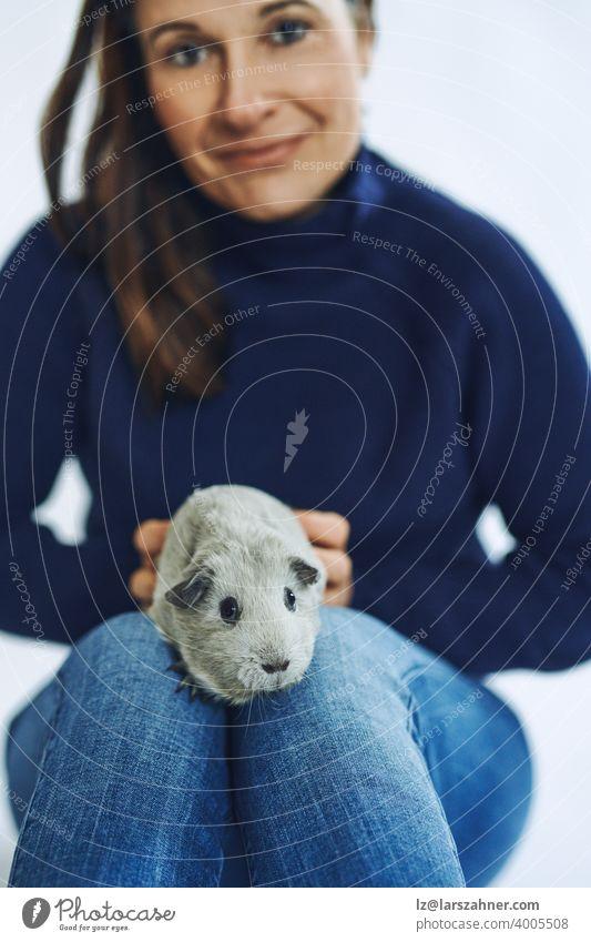 Brünette glückliche Frau hält ein graues Meerschweinchen, das auf ihren Knien sitzt und in die Kamera schaut Haustier klein Papier Sitzen in die Kamera schauen