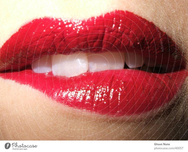 KISS ME, BITE ME! Lippen feminin Frau Küssen rot Lippenstift Mund Zähne