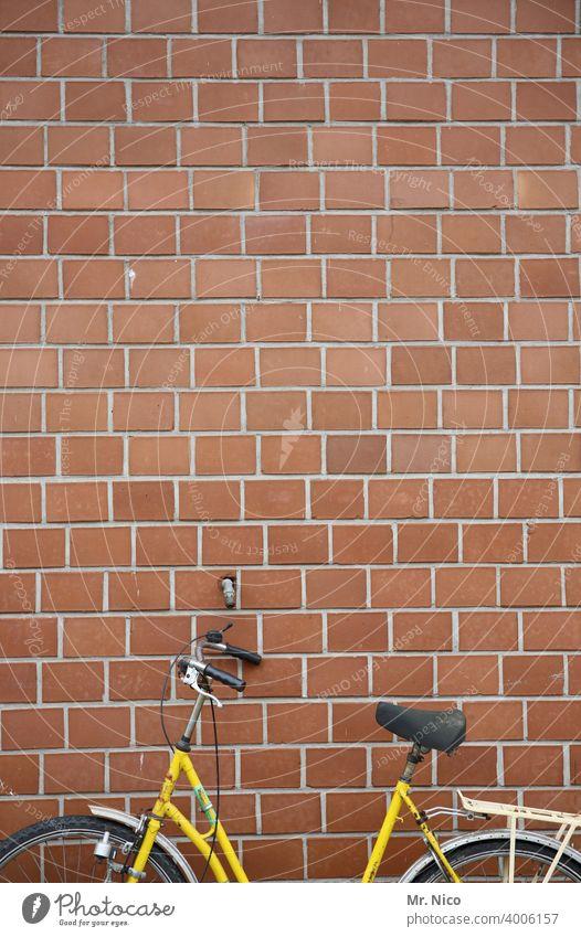 ein halbes Fahrrad Rad abgestellt Mauer Wand gelb Damenfahrrad Fahrradlenker Reifen parken angelehnt Straßenverkehr Fahrradsattel Fahrradreifen Mobilität