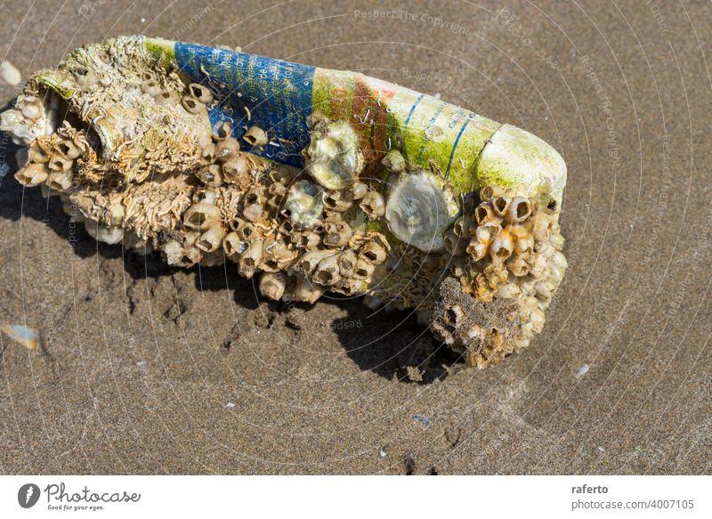 Alte schmutzige Plastikflasche bewachsen mit Muscheln auf einem Sandstrand nach Sturm. Technogenic Verschmutzung der Welt Ozean. Flasche Panzer Kunststoff