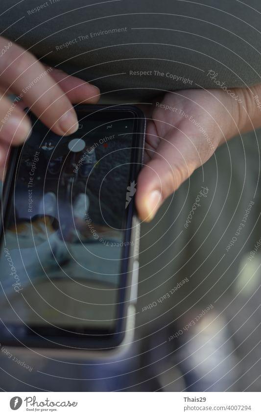 Frauenhand hält schwarzes Handy, Mädchen macht Foto auf Handy während eines Spaziergangs Lifestyle Technik & Technologie Mobile Anzeige Finger digital
