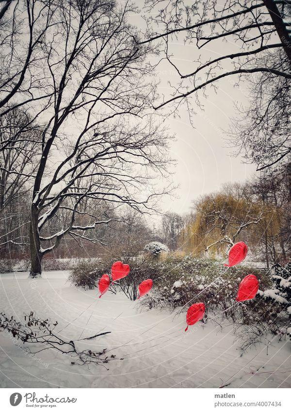 Kalte Herzen Luftballon Winter Schnee Baum Strauch Menschenleer Außenaufnahme kalt Frost Landschaft Himmel Tag Wind