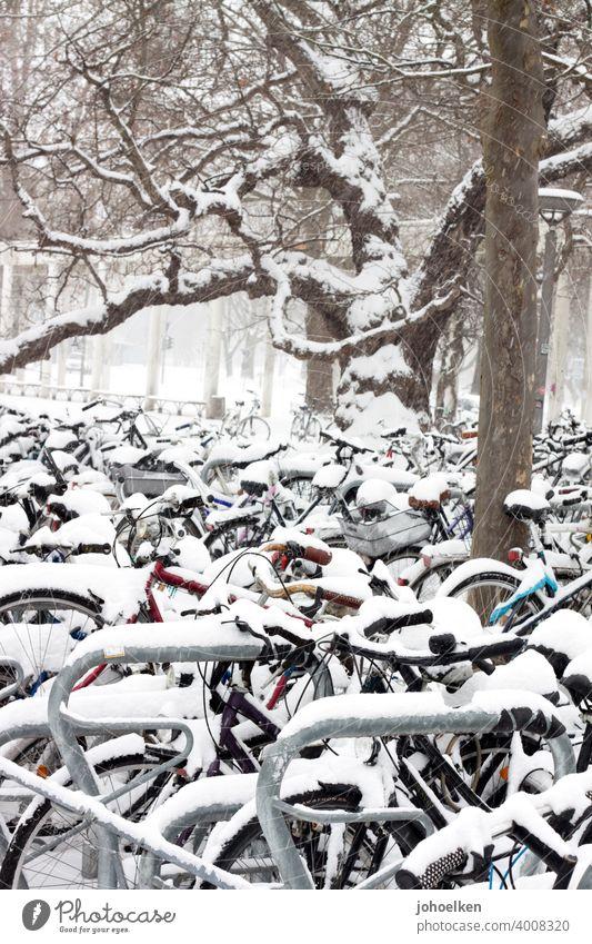 Fahrradparkplatz im Schnee Fahrräder Fahrradständer Winter Schnefall Stillstand eingeschneit kälte frost abgestellt