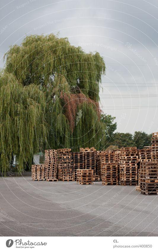 stapelbar Industrie Handel Güterverkehr & Logistik Mittelstand Wolken schlechtes Wetter Baum Arbeit & Erwerbstätigkeit trist fleißig stagnierend Wachstum