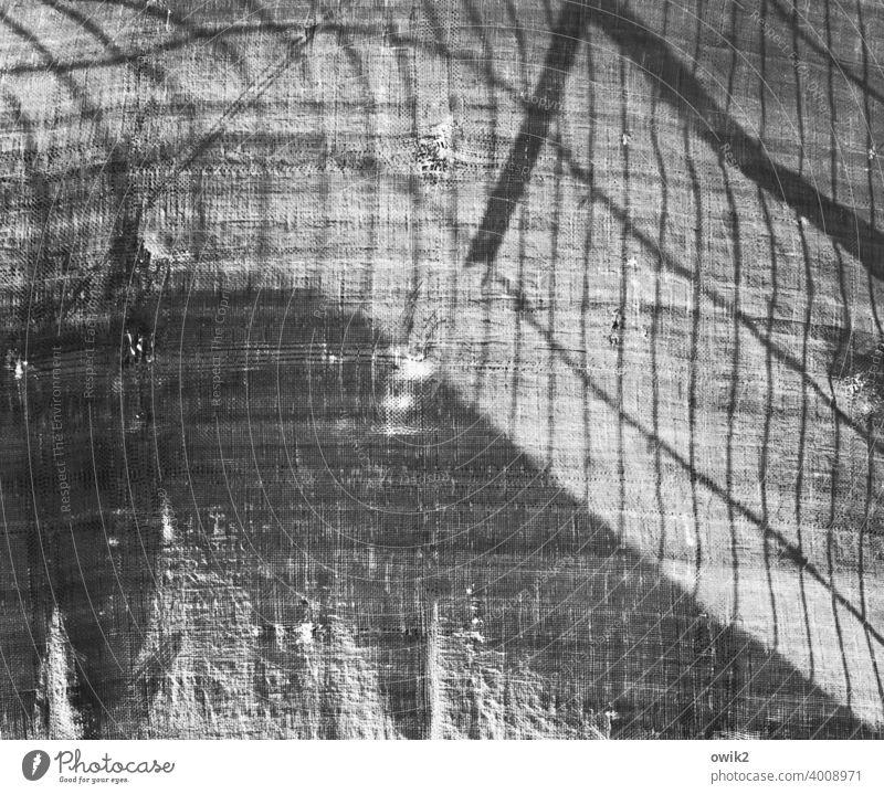 Grundriss Baustelle Schutz stabil Strukturen & Formen Außenaufnahme Sicherheit Gitter Barriere Zaun hängen Muster Menschenleer gewölbt Wind Linien