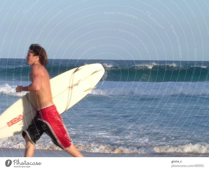 der surfer Meer Strand Sommer Surfbrett Surfer Badehose Ferien & Urlaub & Reisen Australien Oberkörper braun Joggen Freizeit & Hobby Mann Sport Spielen Wasser