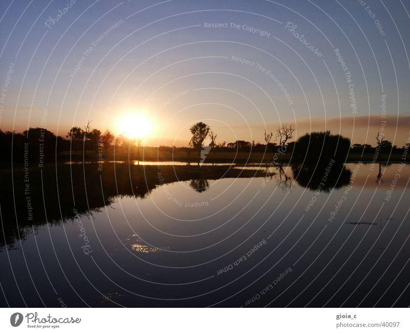 frieden, freude, eierkuchen Sonnenuntergang Reflexion & Spiegelung Baum rosa Australien Frieden Wasser blau
