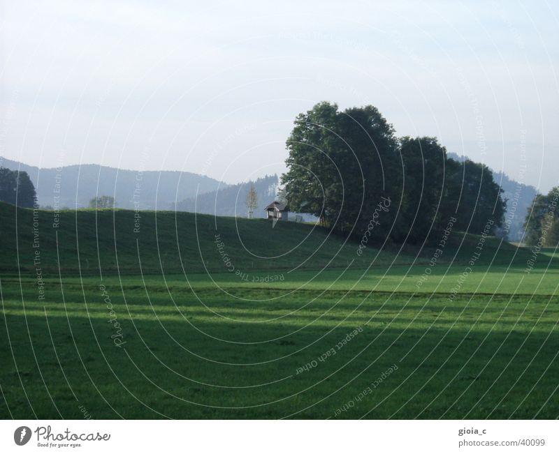 home Baum Sommer Wald Wiese Berge u. Gebirge Religion & Glaube Feld Kraft Kraft Hügel Christentum