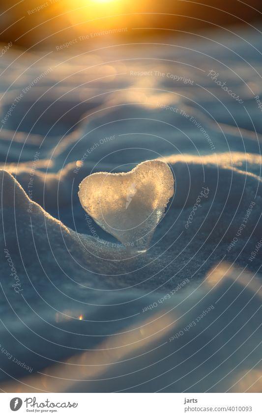 Herz aus Eis vor einem Winter Sonnenuntergang Schnee Licht Frost kalt gefroren weiß Kristallstrukturen Außenaufnahme Schneekristall Natur Winterstimmung