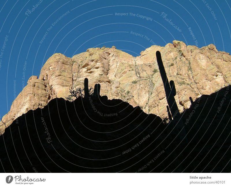Apache Country Berge u. Gebirge Stein Felsen USA Hügel Cowboy Kaktus Western Indianer Arizona