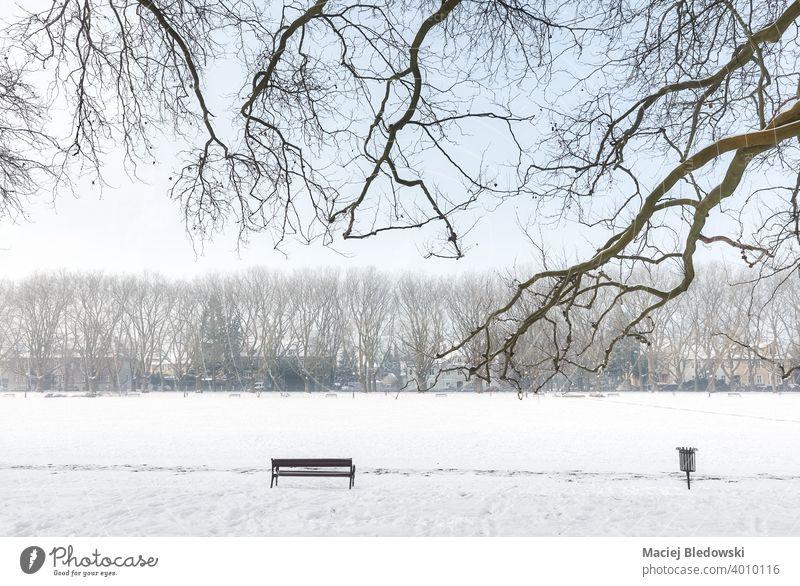 Jan Kasprowicz Park im Winter, Szczecin, Polen. Bank weiß Schnee kalt niemand leer Einsamkeit Baum