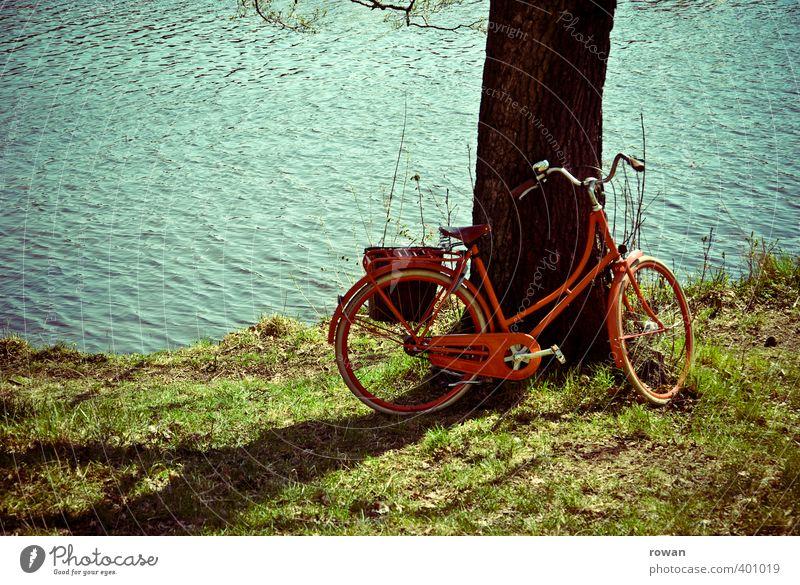 pause Fahrradfahren Wärme rot Baum Baumstamm Damenfahrrad Pause anlehnen Fluss Flussufer See Seeufer Küste Sonne Sonnenlicht Sommer sommerlich Fahrradtour