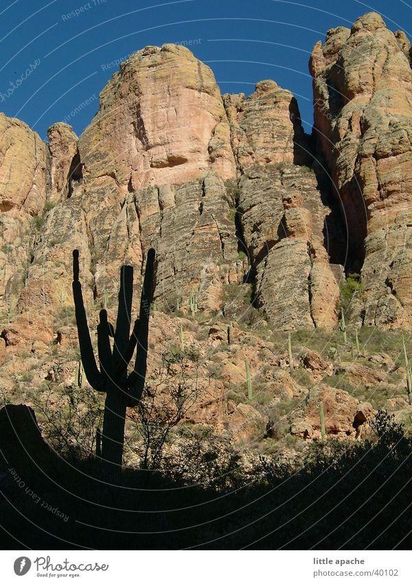 Apache Trail Berge u. Gebirge Stein Felsen USA Abenddämmerung Cowboy Kaktus Western Indianer Medien Arizona