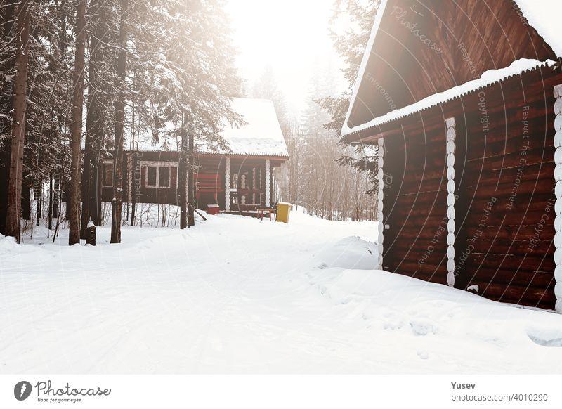 Holzhaus zwischen Bäumen im Winterwald. Blockhaus. Gehäuse aus natürlichen Baumaterialien. Umweltfreundliche Konstruktion. hölzern Haus Wald Totholz Kabine