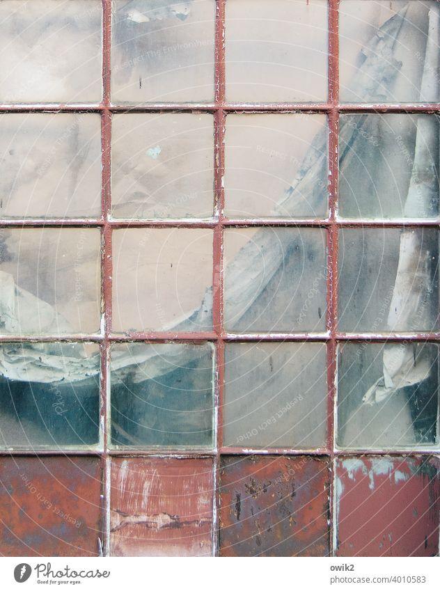 Alte Eleganz Fenster Vergangenheit Vergänglichkeit Außenaufnahme abstrakt Menschenleer Detailaufnahme Farbfoto Gedeckte Farben Verfall trashig Gitter Vorhang