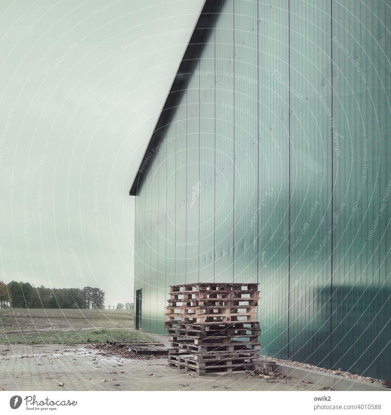 Bestellt und nicht abgeholt Blech Tor Paletten stehen Asphalt Metall Holz Beton Zusammensein einfach warten geduldig ruhig Rechtschaffenheit Zufriedenheit trist