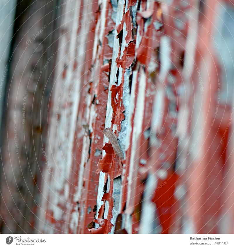 """""""Blätterwerk"""" Mauer Wand Fassade Tür Metall Stahl Rost blau braun grau rot schwarz silber abblättern alt verfallen Verfall Fassadenverkleidung Lack lackiert"""