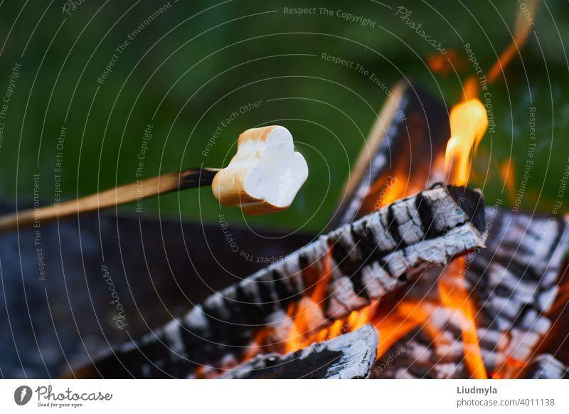 Marshmallow rösten über den Feuerflammen. Marshmallow am Spieß auf dem Lagerfeuer geröstet Abenteuer Hintergrund Barbecue Freudenfeuer Bonbon zäh Nahaufnahme