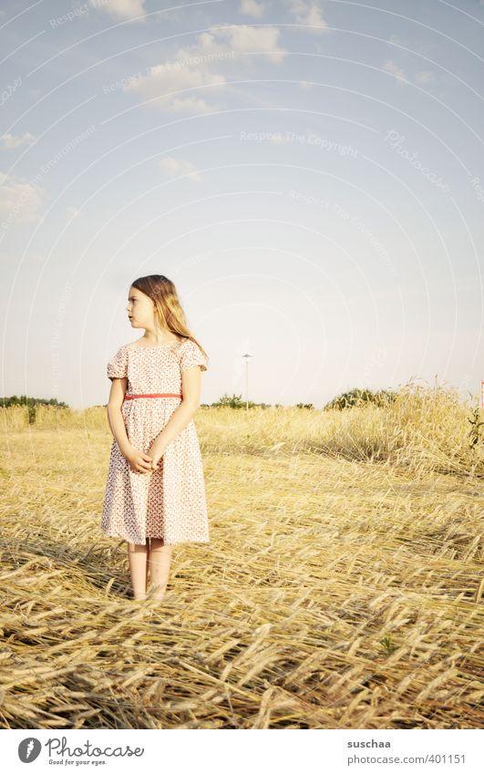mädchen feminin Kind Mädchen Kopf Haare & Frisuren Gesicht 8-13 Jahre Kindheit Natur Landschaft Himmel Sommer Klima Schönes Wetter Dürre Feld Idylle Stimmung