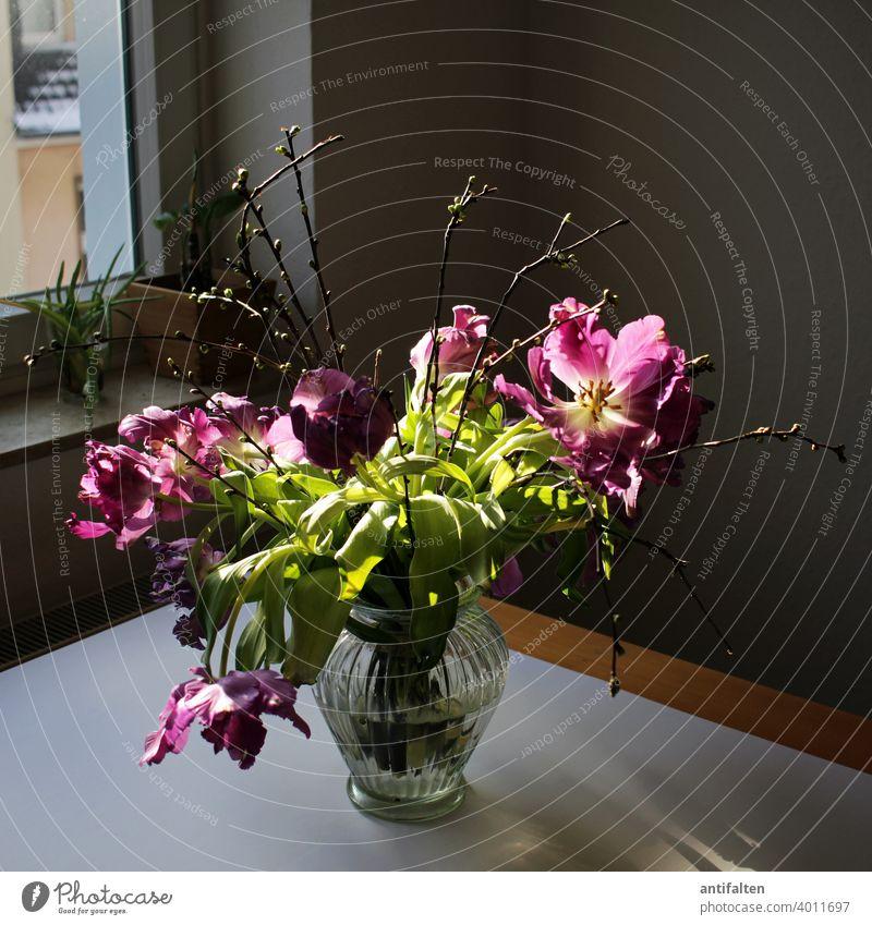 Strüßje Making of Tulpen Blumenstrauß Vase Frühling Blüte Innenaufnahme Pflanze Dekoration & Verzierung Farbfoto Blühend Natur Menschenleer schön Nahaufnahme