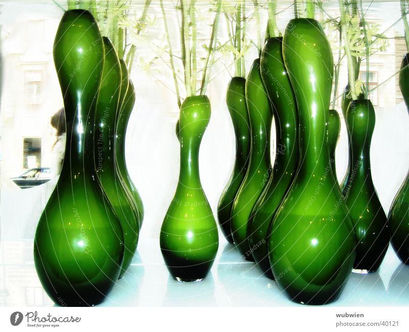 zweigstelle Blume Vase grün Blumenladen Wien Häusliches Leben Glas