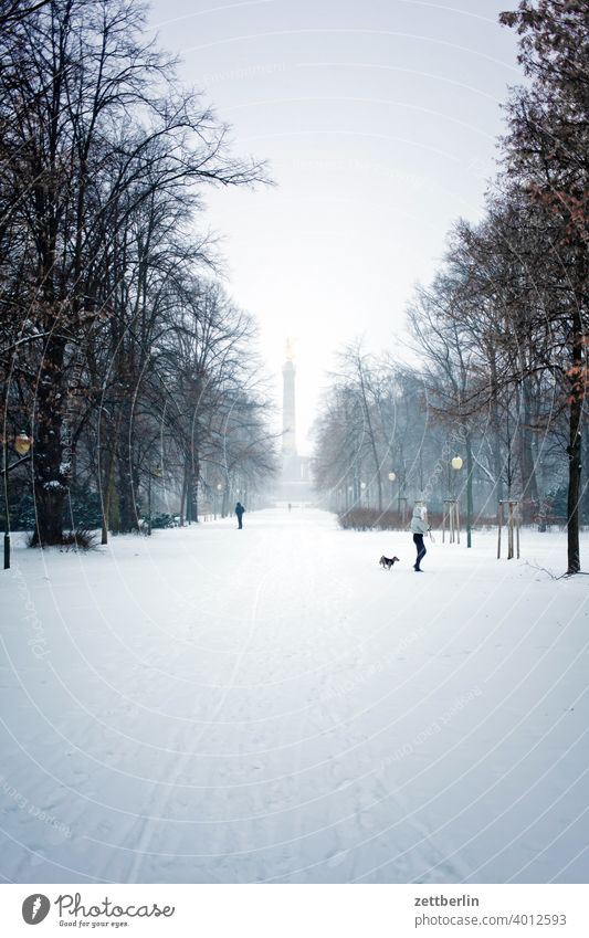 Winter im Großen Tiergarten abend baum berlin blattgold denkmal deutschland dämmerung eis else feierabend figur frost goldelse großer stern hauptstadt himmel