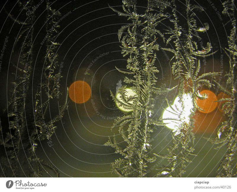 Nacht Licht Fenster Raureif