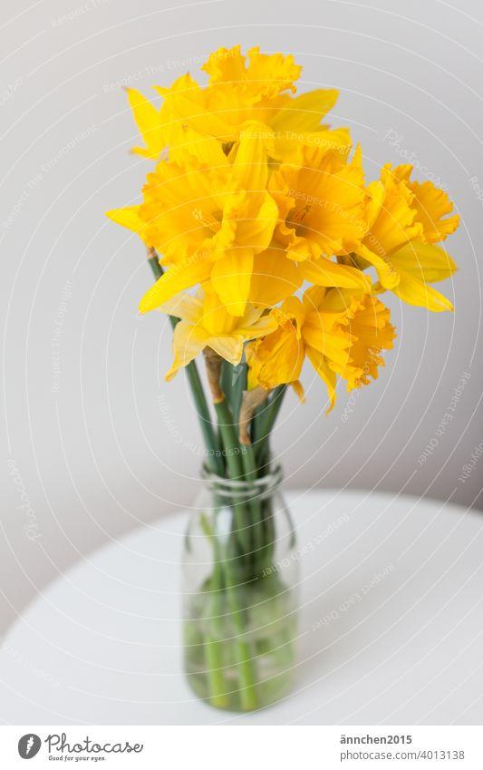 Mittig steht ein Strauß Narzissen in einer Vase auf einem Tisch Ostern Frühling Feste Jahreszeiten Blume gelb Farbfoto Feste & Feiern Dekoration & Verzierung