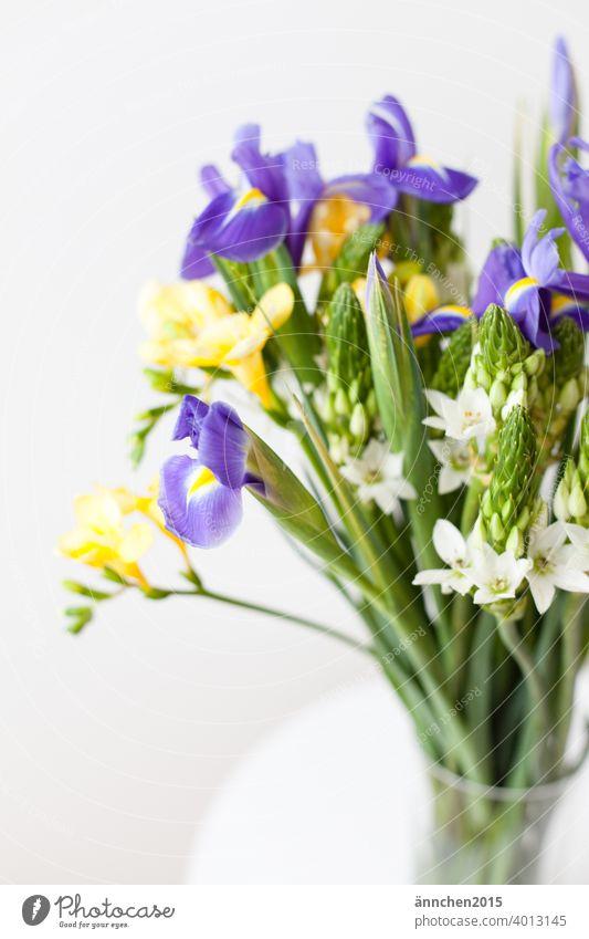 Ein bunter Strauß steht am rechten Bildrand Blumen Blumenstrauß Frühling Blüte Pflanze Natur Farbfoto Sommer weiß schön Blühend Dekoration & Verzierung