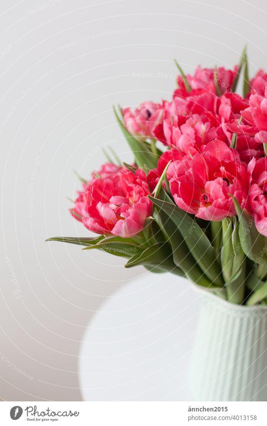 Ein Strauß pinker Tulpen in einer helltürkisen Vase Blumenstrauß Farbfoto Innenaufnahme Frühling Blüte Blühend Dekoration & Verzierung Menschenleer grün rosa