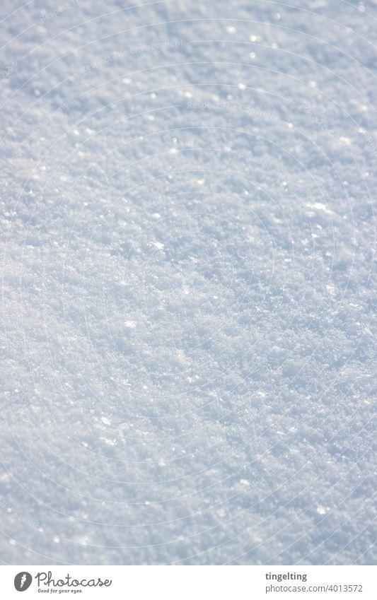 Glitzernder Schnee schnee schneeflocken schneekristall kristalle wetter winter boden oberfläche viel weiß natur magisch glitzer glitzernd nahaufnahme