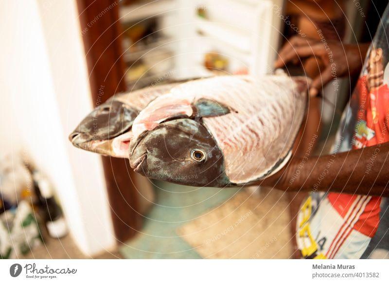 Nahaufnahme von rohem Fisch auf dem Teller vom Fischer gezeigt, sichtbare Hände, häusliche Küche. Riesige frische Fische bereit zum Kochen. Fischzubereitung.