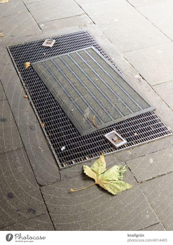 Fußmatte auf einer Lichtschachtabdeckung Eingangsbereich Muster Menschenleer Farbfoto Laub Blatt Herbst Außenaufnahme Tag Vergänglichkeit grau grün welk dreckig