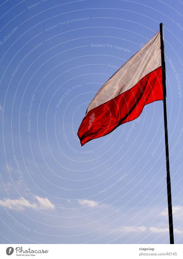 Polen Fahne Ausstellung Messe flags poland