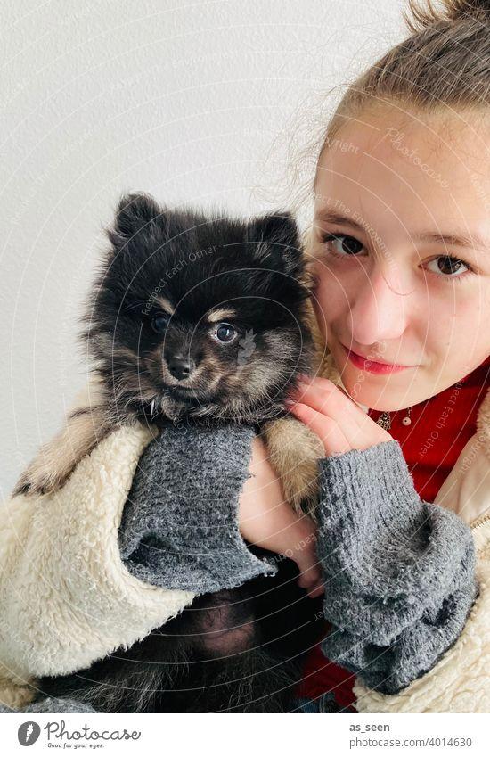 Mädchen hält Black Pomeranian Welpen auf dem Arm Zwergspitz Hunderasse Blick in die Kamera Freude Tierliebe Farbfoto 1 Haustier Tag niedlich Freundlichkeit
