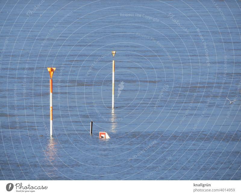 Hochwasser am Rhein Überschwemmung Klimawandel Wasser Wetter Fluss Natur Umwelt Außenaufnahme schlechtes Wetter Flussufer überschwemmt Reflexion & Spiegelung