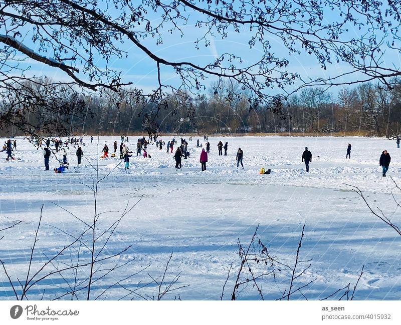 Eislaufen Schlittschuhlaufen Natur See Winter Menschen Schnee kalt Frost gefroren frieren weiß Landschaft im Freien Außenaufnahme zugefrorener see Eisfläche