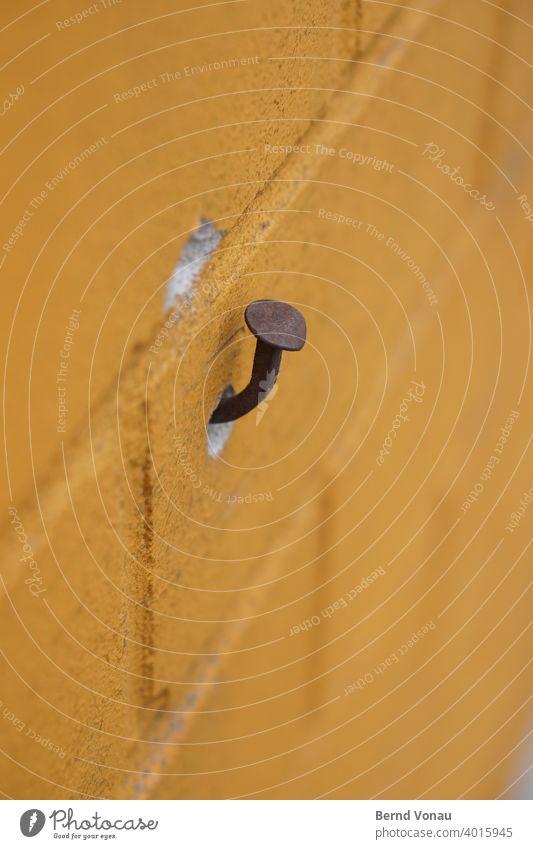 Aufhänger Wand Nagel verbogen Rost aufhängen Pilz mauerwerk Mauer Mauerstein Farbe wandfarbe Fassade Fuge Bokeh rostig Loch provisorium provisorisch gelb braun