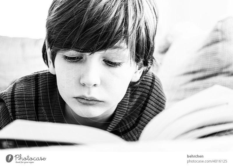 spannende geschichten Spannung Familie Sohn Interesse Kind Kindheit Junge lesen Buch Konzentration Literatur Kindererziehung Bildung lernen nachdenklich Neugier