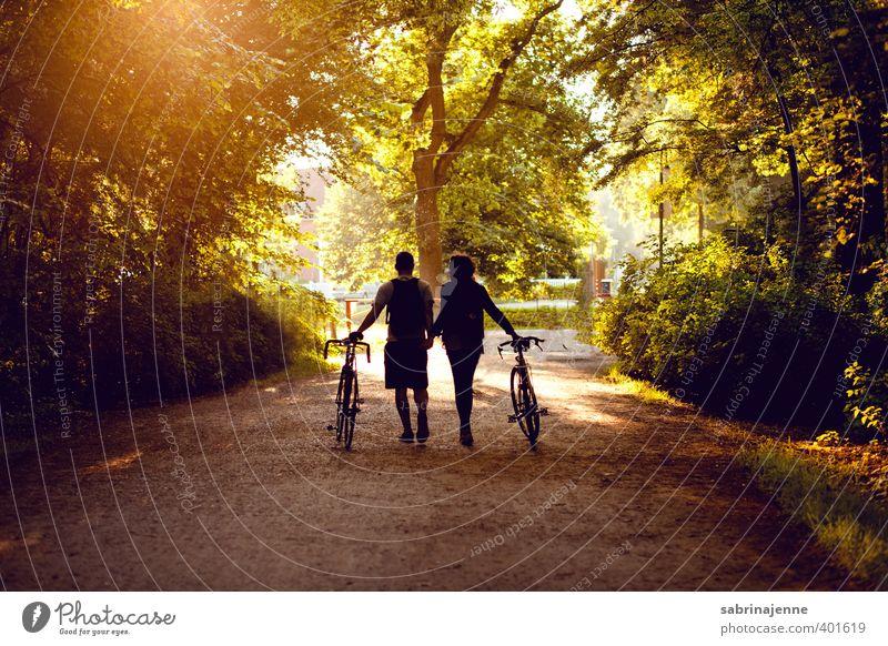 in den Sonnenuntergang Freude Glück Gesundheit Freizeit & Hobby Fahrradfahren Mensch Freundschaft Paar Erwachsene Leben Natur Landschaft Sport träumen
