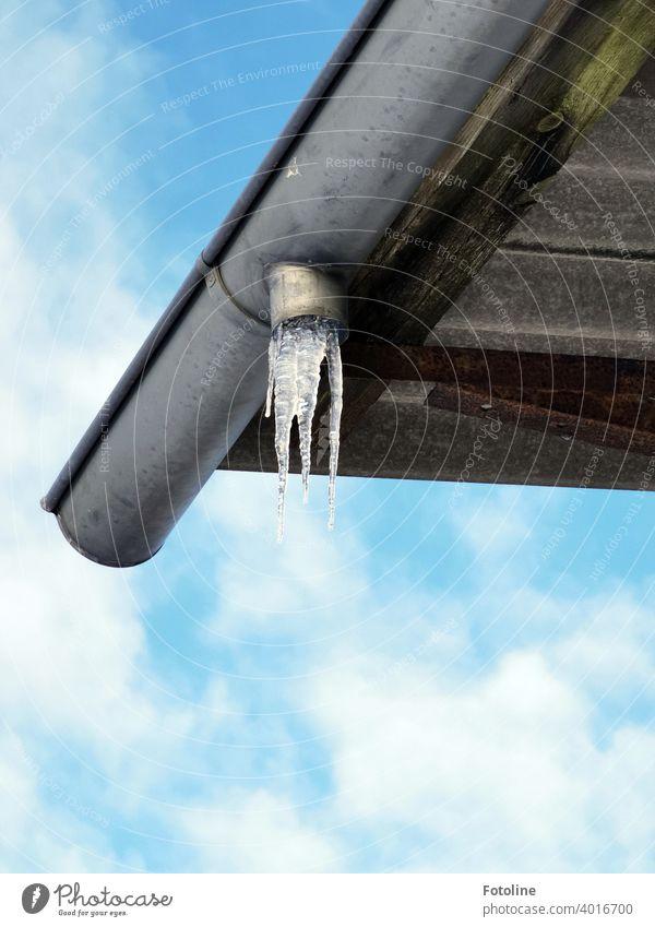 Eiszapfen an einer Regenrinne eines lang verlassenen Hausdaches Dach Winter kalt gefroren Frost blau weiß Wasser frieren Außenaufnahme Farbfoto Menschenleer Tag